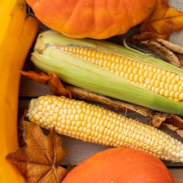 平干しトウモロコシとカボチャ 無料写真