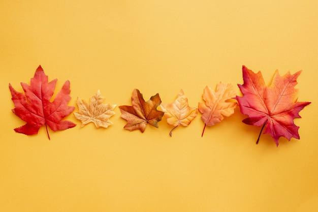 黄色の背景にトップビューカラフルな葉 無料写真