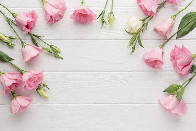 ピンクのバラの花のコピースペースの背景 無料写真