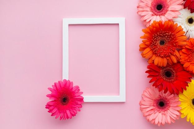 ガーベラデイジーの花を持つ空のフレーム 無料写真