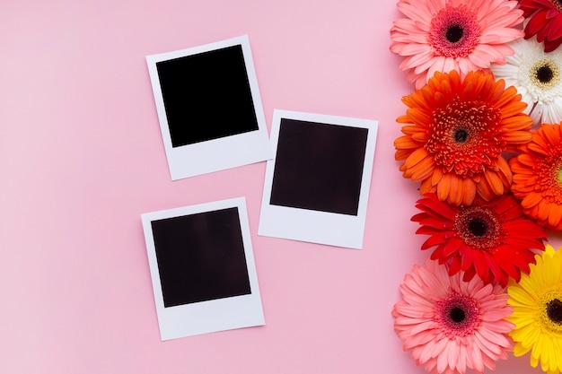 ガーベラのデイジーの花を持つビンテージ写真 無料写真