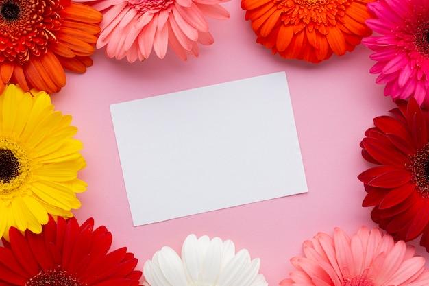 ガーベラの花に囲まれた空白の白いカード 無料写真