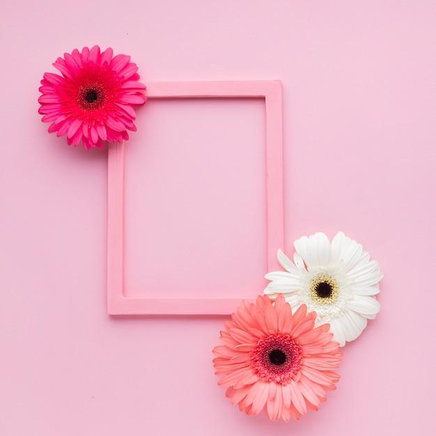 花とコピースペースでかわいいピンクフレーム 無料写真