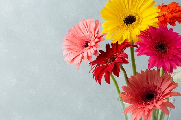 ガーベラの花を持つ空間の背景をコピーします 無料写真