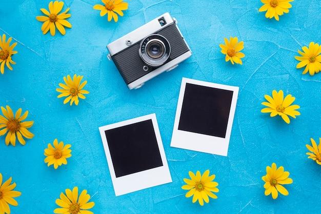 ポラロイドカメラと写真のスペインオイスターアザミ 無料写真