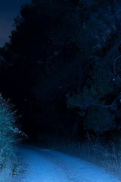 夜に照らされた道路 無料写真