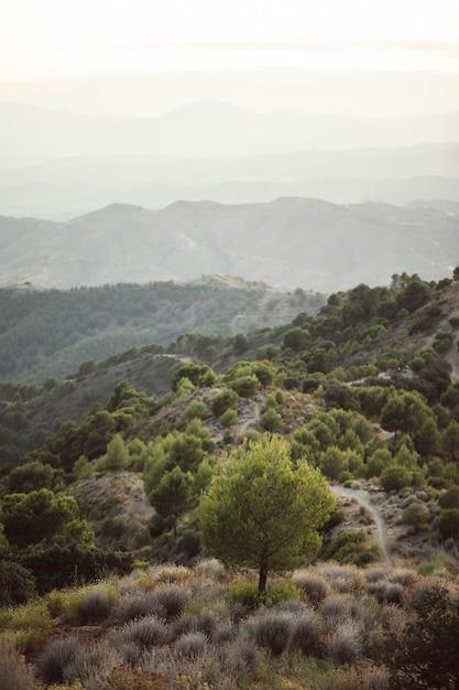 山と単一の空のハイビューショット 無料写真