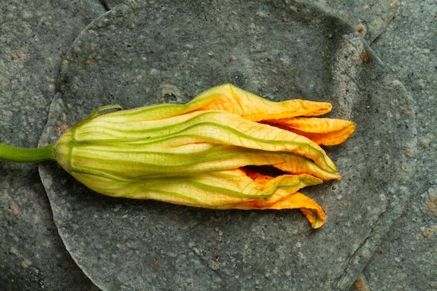 ほうれん草のトルティーヤとクローズアップ乾燥カボチャの花 無料写真
