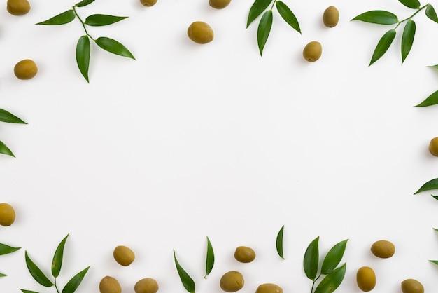 オリーブと葉で作られたフレーム 無料写真