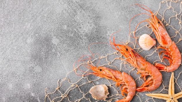 トップビューのエビとヒトデを漁網でキャッチ 無料写真