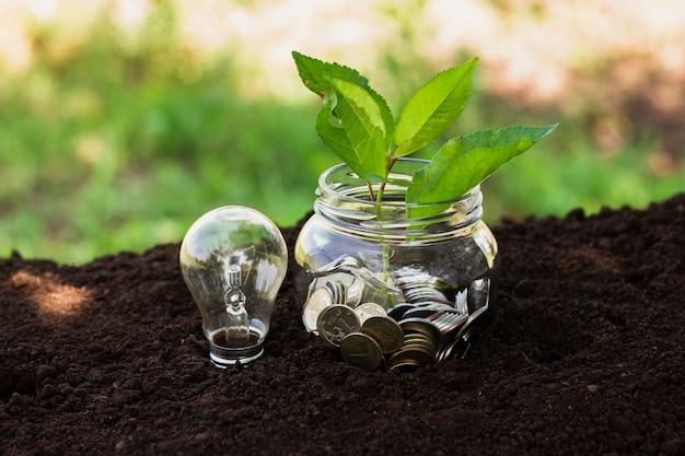 貯金と土地の小さな木の瓶 無料写真