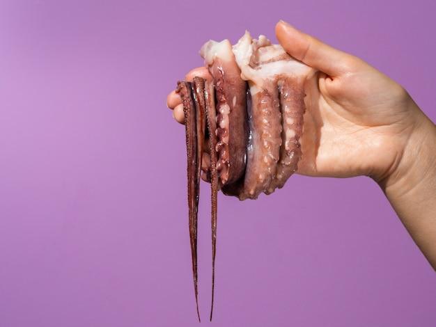 タコを持っている手で紫色の背景 無料写真