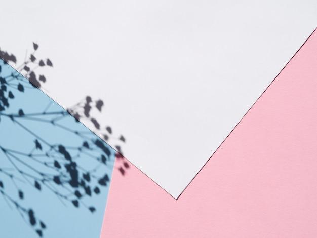 Белая бумага на фоне с веткой цветок тени Бесплатные Фотографии