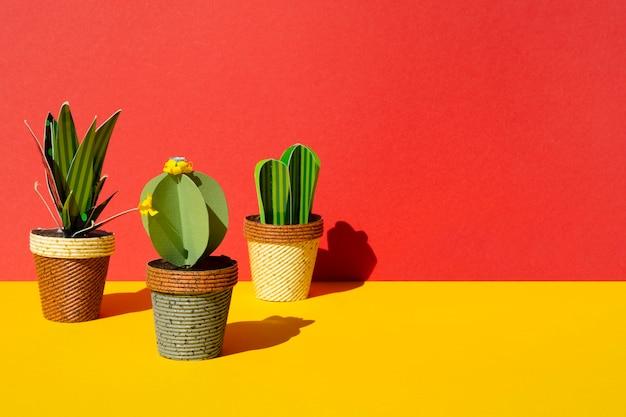 赤の背景にサボテンの正面配置 無料写真