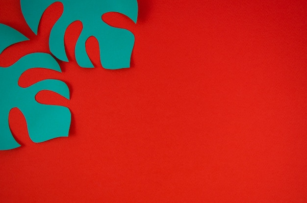 Синие листья монстера с красным фоном Бесплатные Фотографии