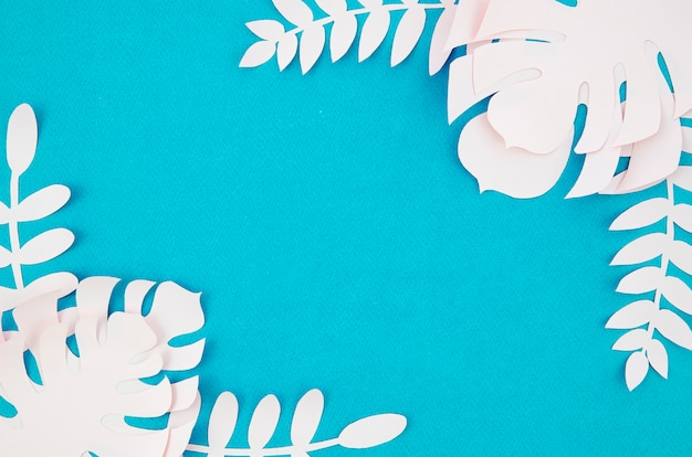 青色の背景に白いモンステラの葉 無料写真