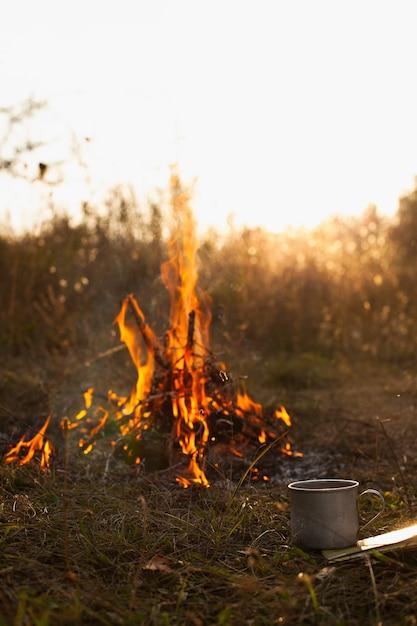 自然の中で炎と低角度の火 無料写真