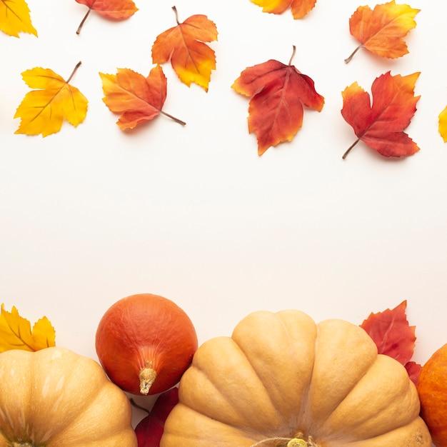 大きなカボチャと葉を持つフラットレイアウトフレーム 無料写真
