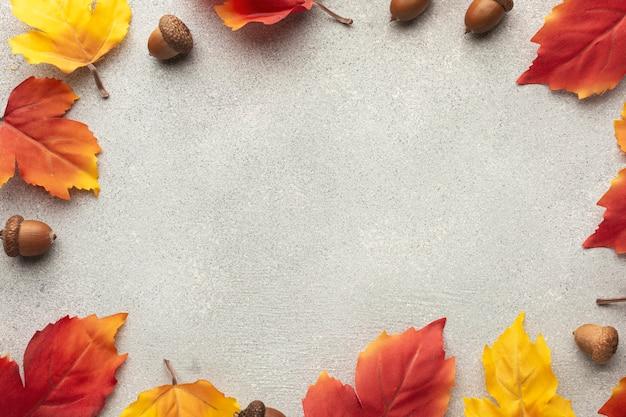 葉とドングリのトップビュー円形フレーム 無料写真