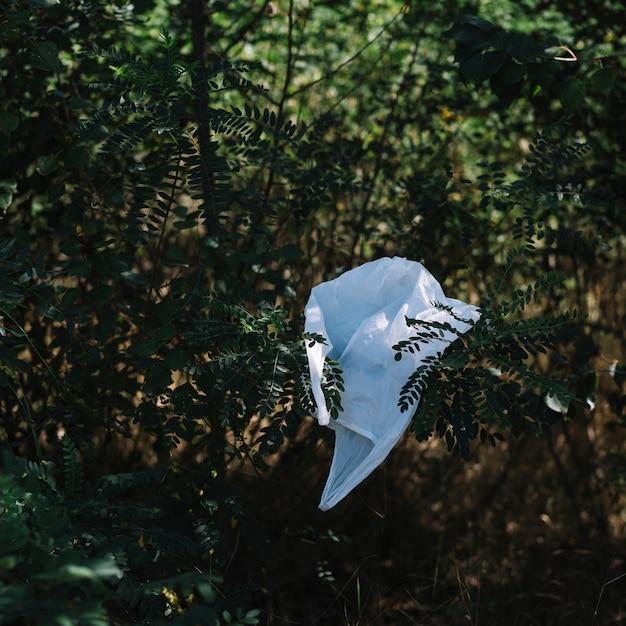 Белый пластиковый пакет на природе Бесплатные Фотографии