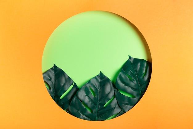 中の葉で紙で作られた円 無料写真