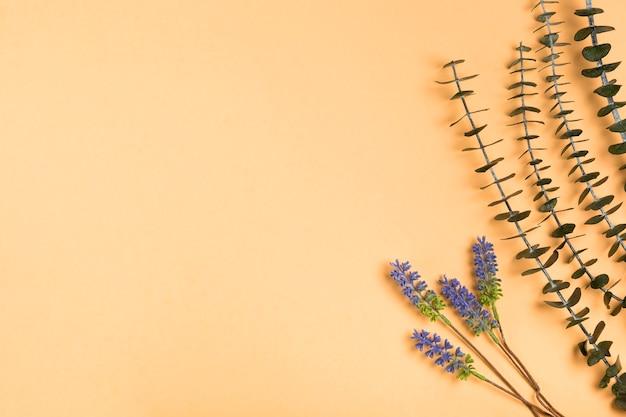 Вид сверху натуральной лаванды на бумаге Бесплатные Фотографии