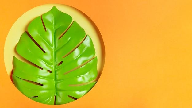 現実的な葉を持つコピースペースアートワーク 無料写真
