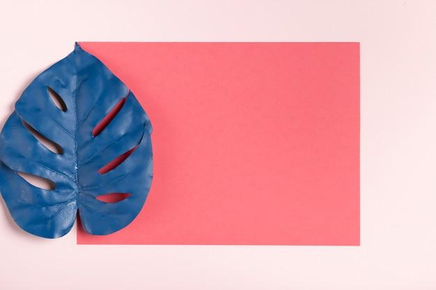 ピンクの背景のモックアップに青い葉 無料写真