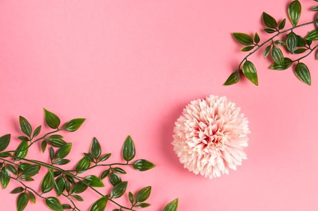 葉の枝とピンクの花 無料写真