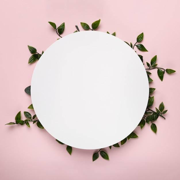 葉の上の白い円のモックアップ 無料写真