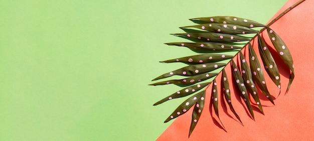 コピースペースの背景を持つ点線のシダの葉 無料写真
