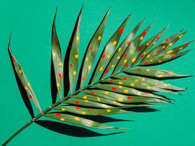 シダの葉に赤と黄色のペイントドット 無料写真