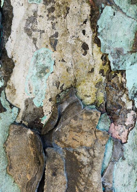 欠けた石の壁の断片 無料写真