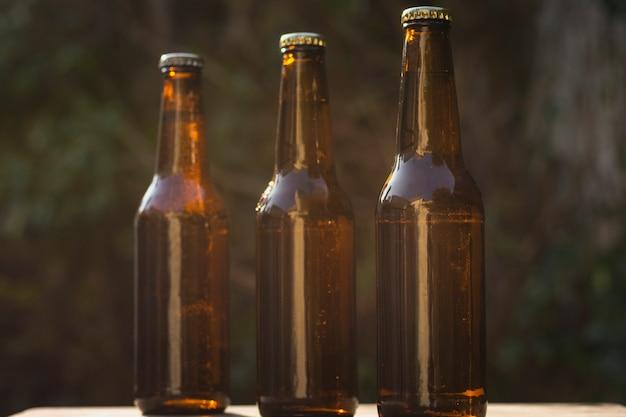 テーブルに並んでいるビール瓶の異なるサイズの正面図 無料写真