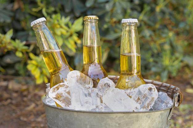 アイスキューブの高角飲料ボトル 無料写真