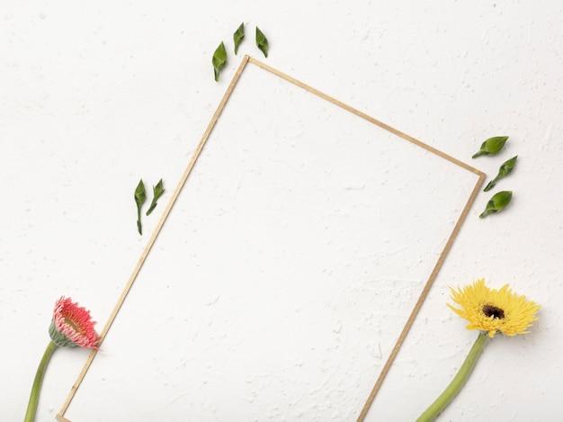 タンポポの花のつぼみと斜めフレーム 無料写真