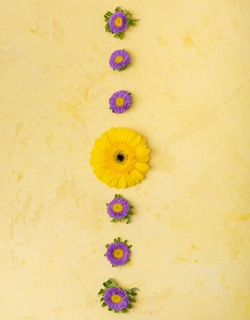 黄色と紫のヒナギクの抽象的なストライプ 無料写真