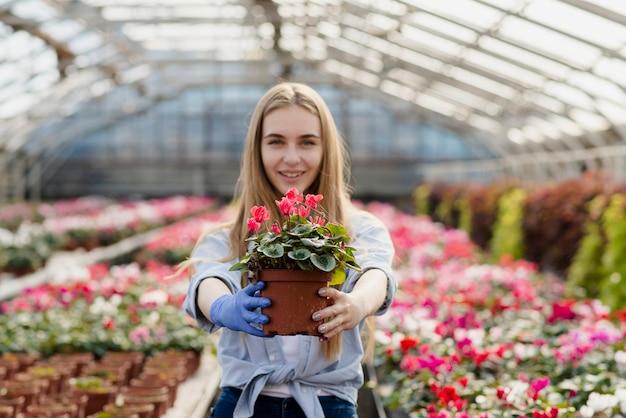 Вид спереди женщина, держащая цветочный горшок Бесплатные Фотографии