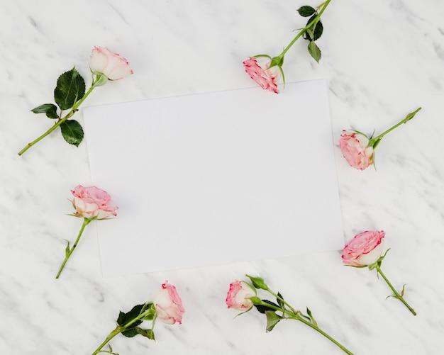 コピースペースを持つ美しい新鮮なバラ 無料写真