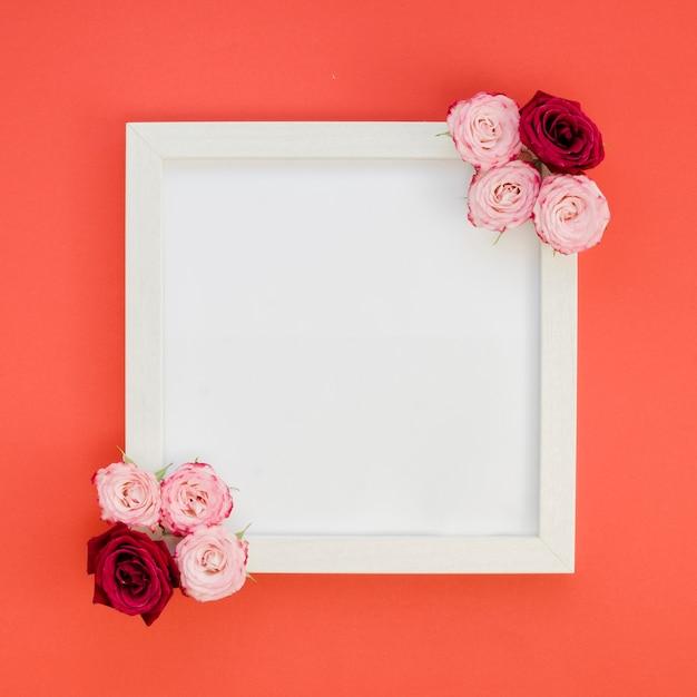 バラのトップビューでシンプルなフレーム 無料写真