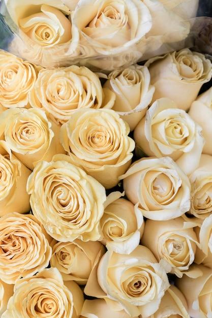 白いバラのクローズアップの束 無料写真