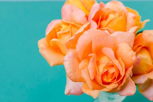 クローズアップオレンジのバラの花びらの概念 無料写真