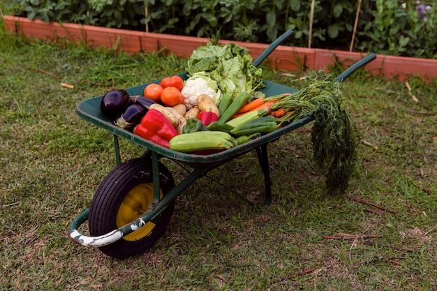 手押し車で野菜のミックス 無料写真