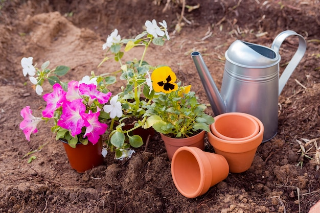 ツールが付いている土の高角度の植木鉢 無料写真
