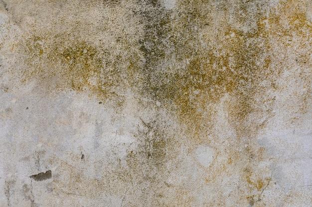 コンクリートの壁に苔と汚れ 無料写真