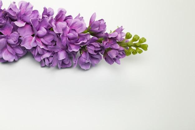 Вид сверху букет цветущих цветов Бесплатные Фотографии