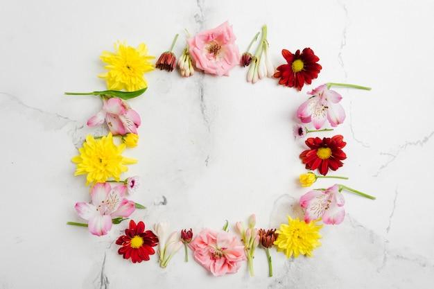 Вид сверху на ассортимент весенних цветов Бесплатные Фотографии