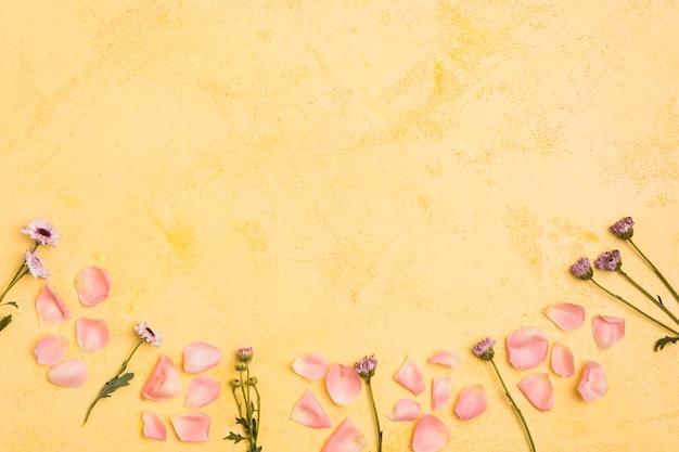 Вид сверху весенних ромашек и лепестков роз с копией пространства Бесплатные Фотографии