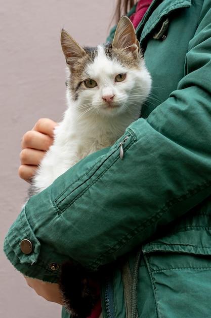 Крупным планом кошка сидит на руках владельца Бесплатные Фотографии