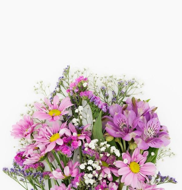 白い背景の上の美しい花の装飾 無料写真